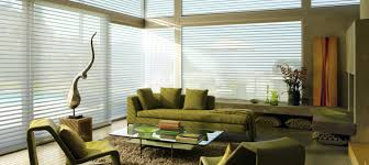 Window Shading  Custom Window Shades  Window TreatmentsWindow Shadings Blinds