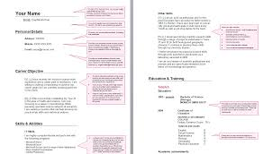 School Leaver Resume Example Examples Of Resumes