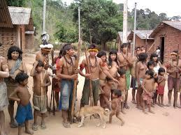 Resultado de imagem para imagem  da tribo arariboia ma