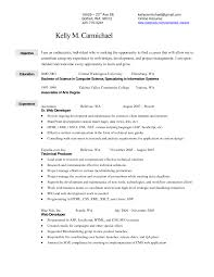 Retail Merchandiser Resume Format Fashion Objective Sample Garment