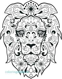 Color Skulls Skulls And Roses Coloring Pages Skull And Roses
