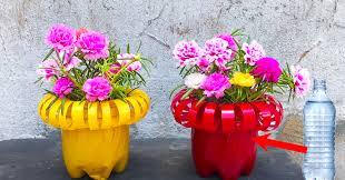diy plastic bottle pots