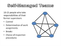 Self Managed Teams Essay