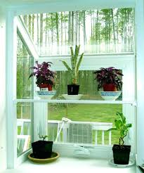 home plants decor top plant decorating ideas in then on indoor decorations
