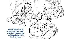 Search through 623,989 free printable colorings at getcolorings. Bioluminescence In The Ocean Coloring Page Pbs Kids For Parents