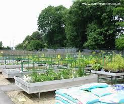 garden pond supplies. Pond Plants Garden Supplies