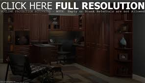 wood office cabinets with doors. home office furniture cabinets on alacati net cabinet ideas wood with doors tall d