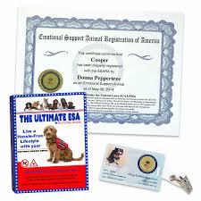 Kit Kit Certification Esa Kit Esa Esa Professional Professional Professional Esa Kit Certification Certification Professional Certification