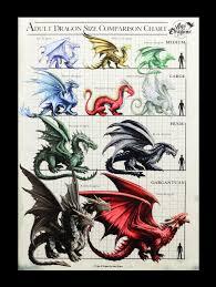 Large Canvas Dragon Size Chart