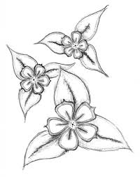 816x1024 pencil drawings easy flowers easy pencil drawings of flowers