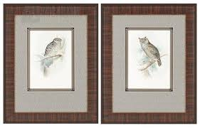 gould owls transitional animals framed wall art xgpp 9037 see details  on transitional framed wall art with gould owls transitional animals framed wall art xgpp 9037