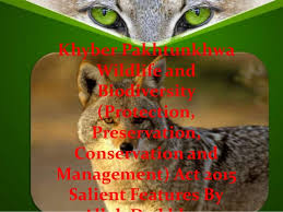 essay on wild life protection essay on wild life protection essay on wild life protection get an a grade even for the hardest essays dissertations essays academic papers of top