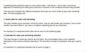 Sample Sales Action Plan 11 Example Format