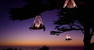 Treehouse Vacation California