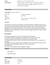 Sample Salesforce Resume