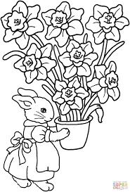Disegno Di Coniglio Con Vaso Di Iris Da Colorare Disegni Da Con Vasi