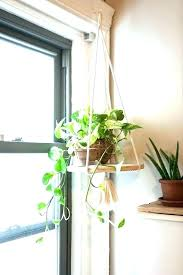 hanging plant stand indoor wall plant holders indoor plant hanger stand indoor hanging plant stand terrarium hanging plant