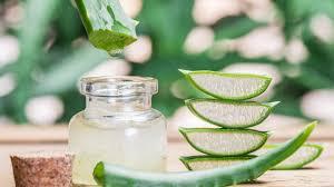 use aloe vera gel for hair growth