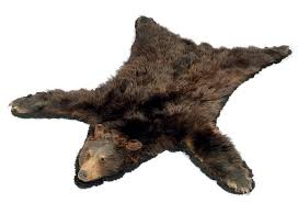 a taxidermy mounted brown bear