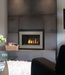 Valor  Fireplace ProductsValor Fireplace Inserts