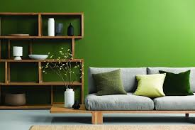 bright green feature wall from haymes paint in