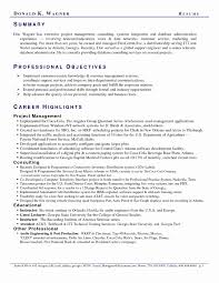 Great Examples Of Resumes Delectable 48 Awesome Summary Examples For Resume Great Resume Templates