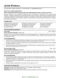 Unique Resume For Sales Manager In Banking Vignette Documentation