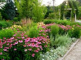 Small Picture 30 best Perennial Gardens images on Pinterest Perennial gardens