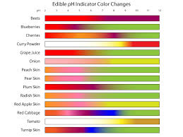 Ph Of Vegetables Chart Edible Ph Indicators Color Chart