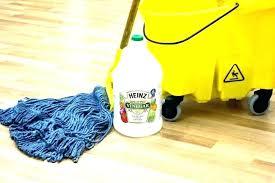 laminate floor mop best mop for laminate floors dry mops for laminate floors steam cleaner for laminate floor mop