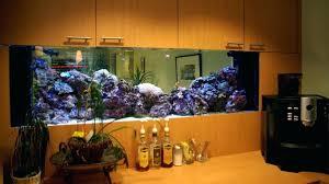D Office Fish Tank Hire Aquarium Gallon Divider Tanks