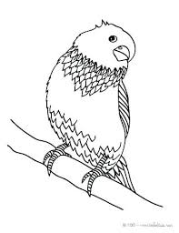 coloring birds birds images for colouring coloring birds baby bird coloring page birds coloring book a