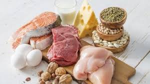 Risultati immagini per proteine