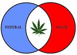 federal legalize marijuana
