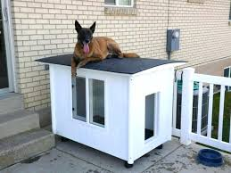 backyard dog kennel best of awesome house ideas indoor homemade build pen how to an indoor dog kennel