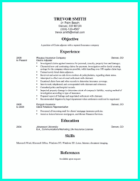 Pin On Resume Sample Template And Format Resume Skills Computer