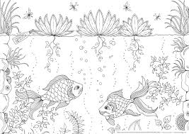 Small Picture Secret Garden With Fish Coloring Pages For Adult Grown Ups