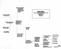 Lineage Chart More Ancestors Lineage Chart