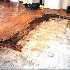 remove glue from wood floors how to adhesive floor removing engineered flooring g