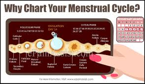 Menstrual Cycle Moon Chart Why Chart Your Menstrual Cycle