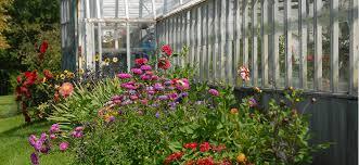 cut flowers gardens tour vermont