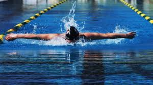 Learn Butterfly Swimming | F2SWIM is a Manufacturer of Swim Gear