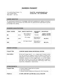 Word Resume Cv Cover Letter Professional Template 2010 Templates