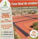 imagem de Populina São Paulo n-19
