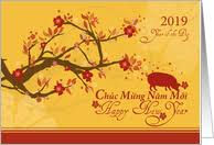 What people often wish each other during tet. Vietnamese New Year Cards From Greeting Card Universe
