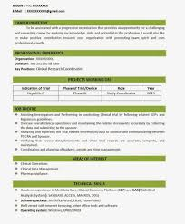 Famous Formats Of Resumes For Freshers Contemporary Entry Level