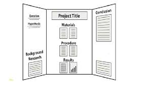 Science Fair Board Layouts Likeable Project Display Rules