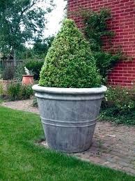 giant flower pot pots big lots outdoor