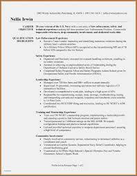 Navy Brag Sheet Template Pdf Lovely Navy Resume Examples Nuke