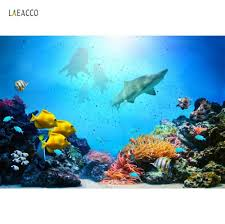Fish Backgrounds Fish Backgrounds For Photography Undersea Shell Coral Party